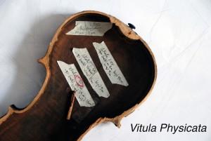 ViolinPic_Title